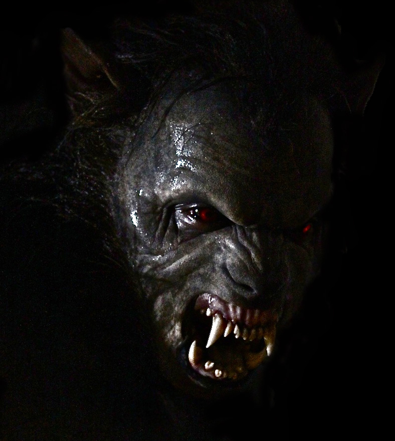 teen wolf - photo #8
